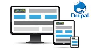 Solucions web responsive a mida de Camaleon Webs amb Drupal