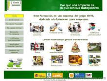 Pàgina inicio: enteformacio-com - projecte web de Camaleon Webs